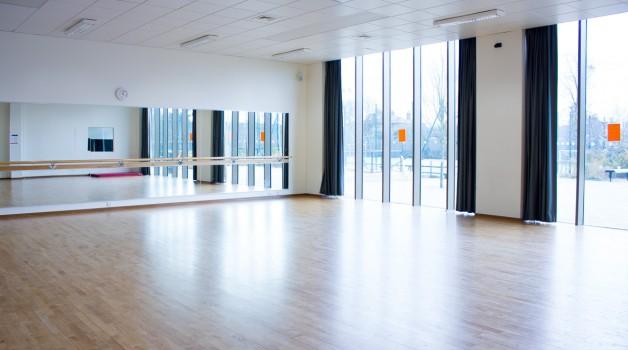 Dance Studio The Elmgreen School