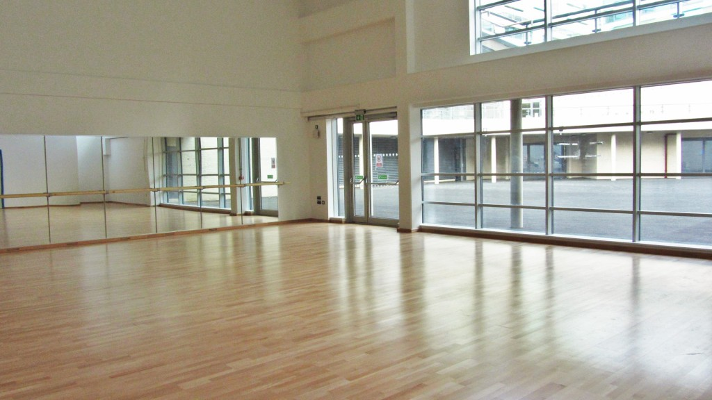 Large bright Dance Studio f