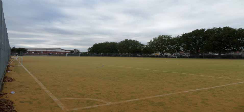 Astro-Turf Pitches